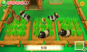 You Can Make a Safari in Harvest Moon: Connect to a New Land