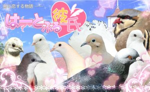 Hatoful Boyfriend Translation Now Available on Steam